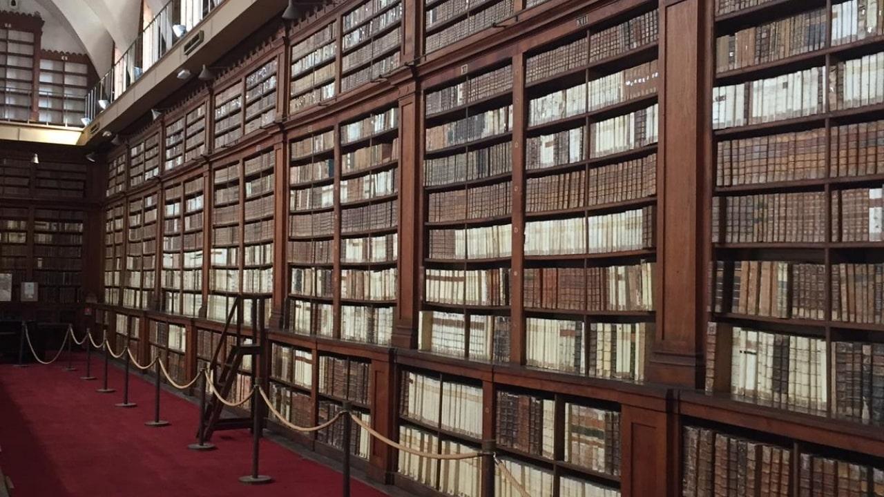 Vue des rayonnages - Bibliothèque Fesch